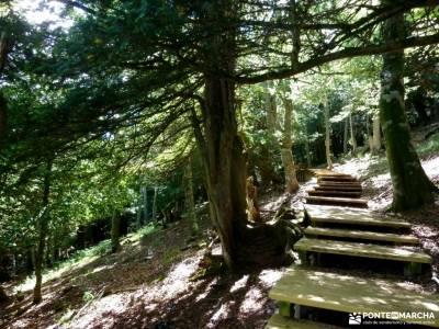 Montaña Palentina;Fuente Cobre;Tosande; puerco ribagorza parque natural de arribes del duero
